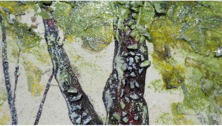 alberi cinesi vendita quadri online quadri moderni